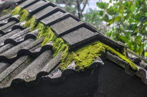 IMPORTANCE OF KEEPING YOUR ROOF CLEAN-AMERICAN CONSTRUCTION