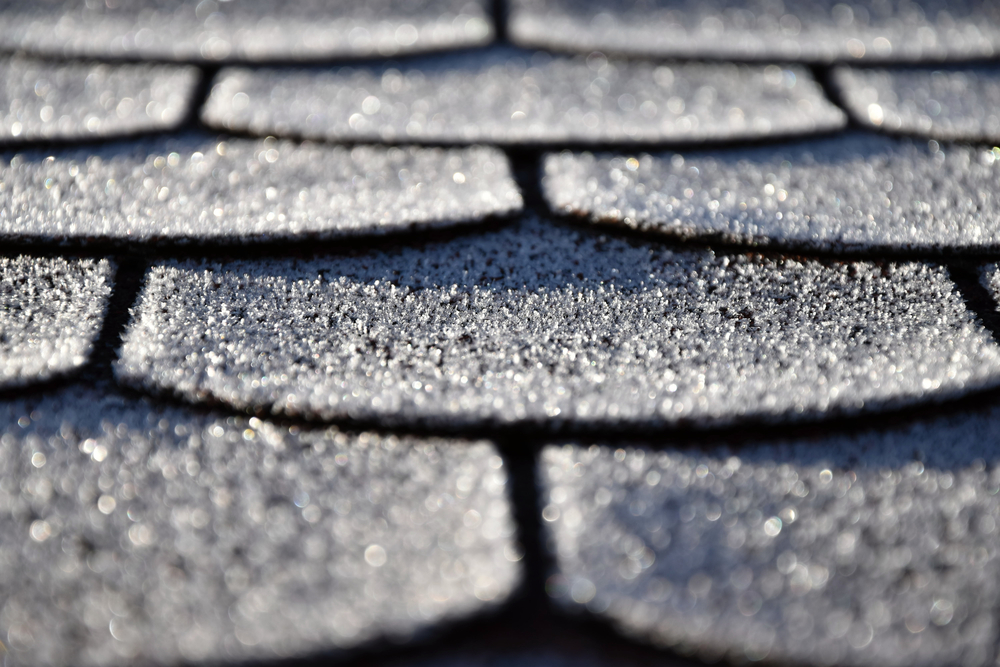 Reasons To Not Delay Replacing Your Roof